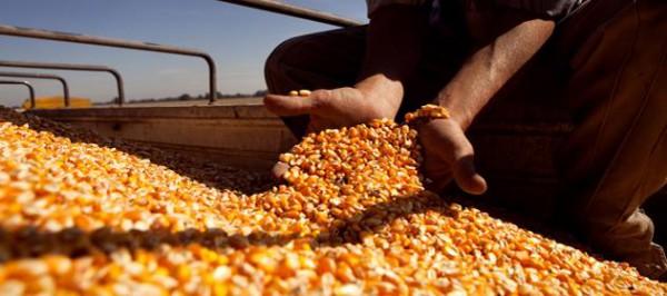 Recibidores de granos extienden el paro