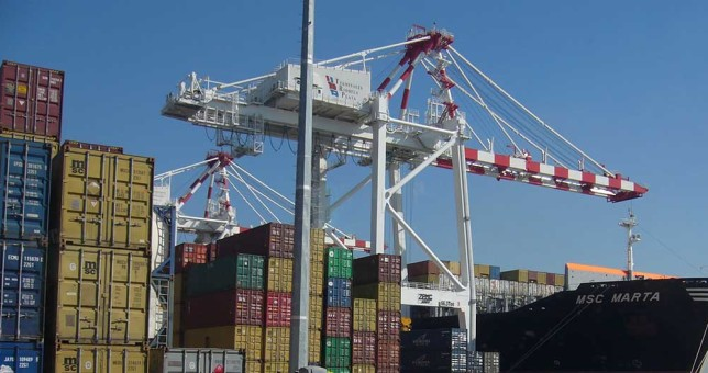 Sin certezas sobre la continuidad laboral, los portuarios evalúan protestas para marzo