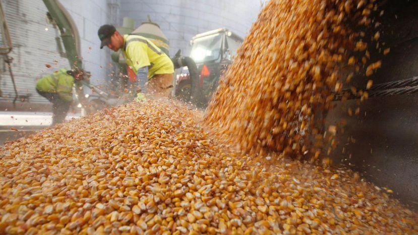"""Recibidores de granos advierten que no aceptarán """"techo salarial"""""""