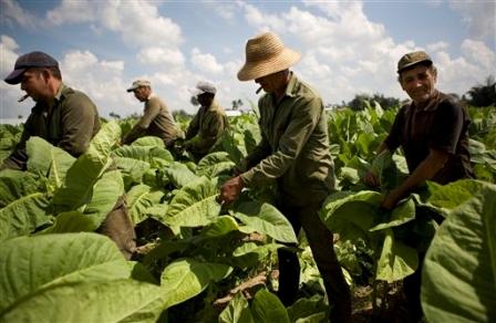 Denuncian que Nación «bajará» el Programa Interzafra en Misiones