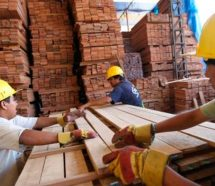 En el 78% de las madereras cayó la producción y el 35% despidió personal