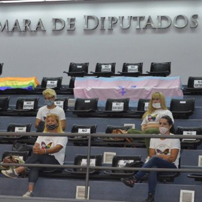 Cupo laboral trans: La Cámara de Diputados convirtió en Ley el proyecto de Inclusión Laboral en La Pampa