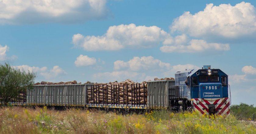 Maturano advirtió que habrá paro general de trenes si continúa suspendido el ramal Roca Cargas